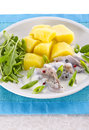 Cream herring Stock Images