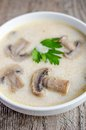 Cream of mushroom soup on the table Royalty Free Stock Photos