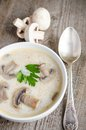 Cream of mushroom soup on the table Stock Photos