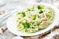 Creamy cheesy broccoli spaghetti with chicken Royalty Free Stock Photo