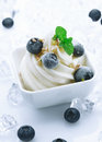 Creamy ice cream and fresh blueberries Royalty Free Stock Photography