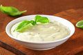Creamy salad dressing made of mayonnaise buttermilk garlic herbs spices and grated cheese Stock Images