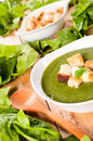 Creamy soup with dried crusts spinach selective focus on the Stock Photos