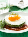 Creamy spinach with fried egg healthy breakfast Stock Photography