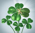 Create your success and taking control of destiny with a three leaf clover being changed to good luck four leaves by taping Stock Photos