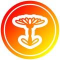 A creative blooming flower circular in hot gradient spectrum