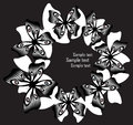 Creative collage with black and white butterflies. Royalty Free Stock Photo
