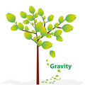 Creative gravity Royalty Free Stock Images