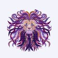 Creative image of a lion`s head with a patterned mane