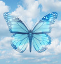 Creative inspiration and aspirations concept with a blue monarch butterfly in a sky background as a spiritual idea of hope Stock Images
