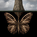 Creative roots concept as a tree with a root shaped as a butterfly as a powerful environmental metaphor or symbol for inner Stock Image