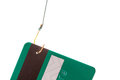 Credit card on a fishing hook closeup of caught Royalty Free Stock Photo