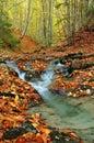 Potok na jeseň