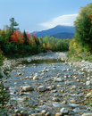Creek With Autumn Trees And Mt...