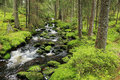 Creek in the beautiful wilderness the summer mountains sumava in southern czech Stock Image