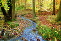 Creek in a fabulous autumnal wood Stock Photos