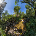 Creek in the fairy forest wide-angle panorama polar distortion Royalty Free Stock Photo