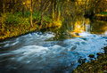 Creek in fall romantic flowing through forrest Royalty Free Stock Images