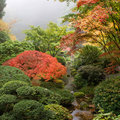 Creek at Japanese Garden in the Fall Stock Photo