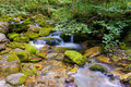 Creek in the ligurian alps and little waterfall during summer season Royalty Free Stock Photos
