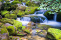 Creek in the ligurian alps and little waterfall during summer season Stock Photography