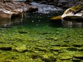 Creek in mountain canyon small with clear green water comes out of Stock Images