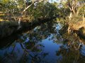 Creek a rarity in australian outback australia queensland Royalty Free Stock Photography