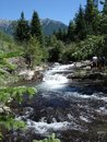Creek in Rocky Mountains Canada Royalty Free Stock Images