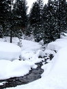 Creek scene snow winter Royaltyfria Foton