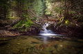 Creek with small waterfall, Sumava, Czech Republic Royalty Free Stock Photo