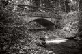 Creek with stone bridge sumava czech republic black and white picture of bily national park Royalty Free Stock Photos