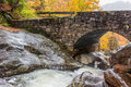 Creek Underneath Stone Bridge in Fall Royalty Free Stock Photo