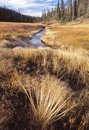 A creek wanders through a valley Royalty Free Stock Photo