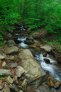 Creeks below Amicalola fall Stock Images