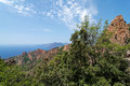 Creeks of piana in corsica island Royalty Free Stock Photography
