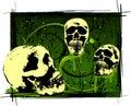 Creepy Halloween Skulls Royalty Free Stock Photos