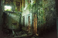 Creepy ruined and overgrown by plants interior of old mansion. Life after humanity post-apocalyptic concept Royalty Free Stock Photo