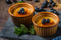 Creme brulee with berries delicious and simple french dessert Stock Photography
