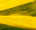 Crete senesi, characteristic landscape in Val d'Orcia Royalty Free Stock Photo