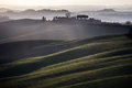 Crete senesi rolling hills sunset tuscany italy on rural landscape and sunlight green fields a farm with trees siena Royalty Free Stock Photos