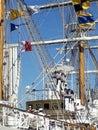 Crew climbing ropes
