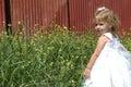 Criança bonita Fotografia de Stock