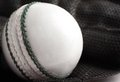 Cricket ball and glove. Royalty Free Stock Photography