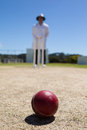 Cricket ball on pitch with umpire standing in background Royalty Free Stock Photo
