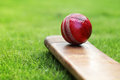 Cricket bat and ball Royalty Free Stock Photo