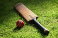 Cricket bat and ball Royalty Free Stock Images