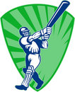 Cricket batsman batting Royalty Free Stock Photos