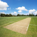 Cricket pitch empty Royalty Free Stock Photo