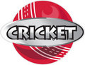 Cricket sports ball Royalty Free Stock Photos