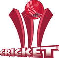 Cricket sports ball wicket Royalty Free Stock Photo